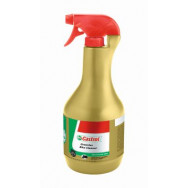 PYN DO MYCIA CASTROL GREENTEC SPECIAL BIKE CLEANER 1L